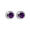 Picture of Studex® Select™ Stainless Steel Crystals Bezel February Amethyst Regular: PR-R202W-STX